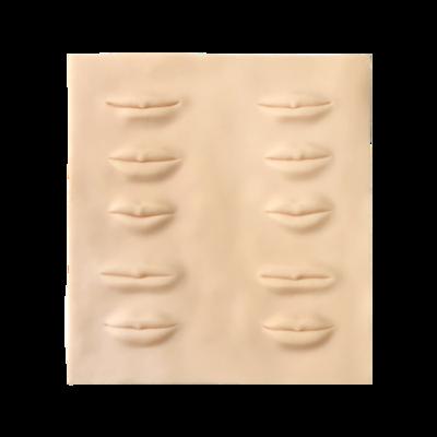 3-dimensioneel oefenvel voor lipcontour